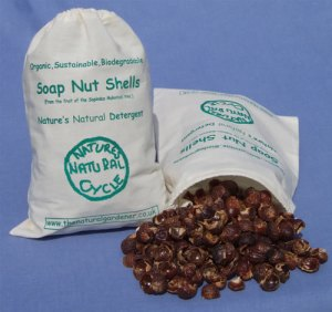 Soap nut shells